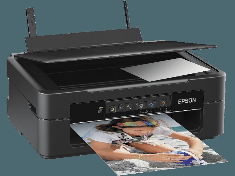 epson xp-235 expression home scan to pdf button