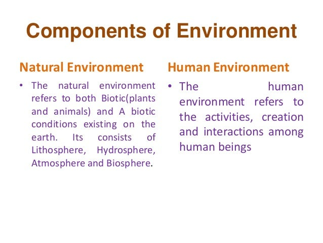 components of natural environment pdf