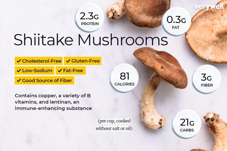 medicinal value of mushroom pdf