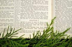 the gospel according to luke biblical prespective pdf